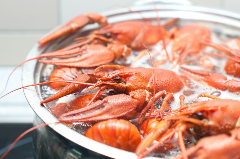 how to boil lobsters, caribbean food, caribbean cuisine recipes