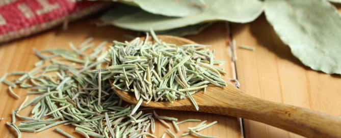 rosemary health benefits, rosemary benefits, rosemary